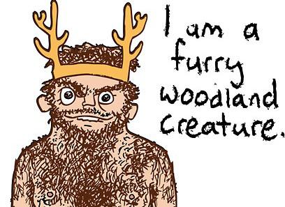 Small Furry Woodland Camp